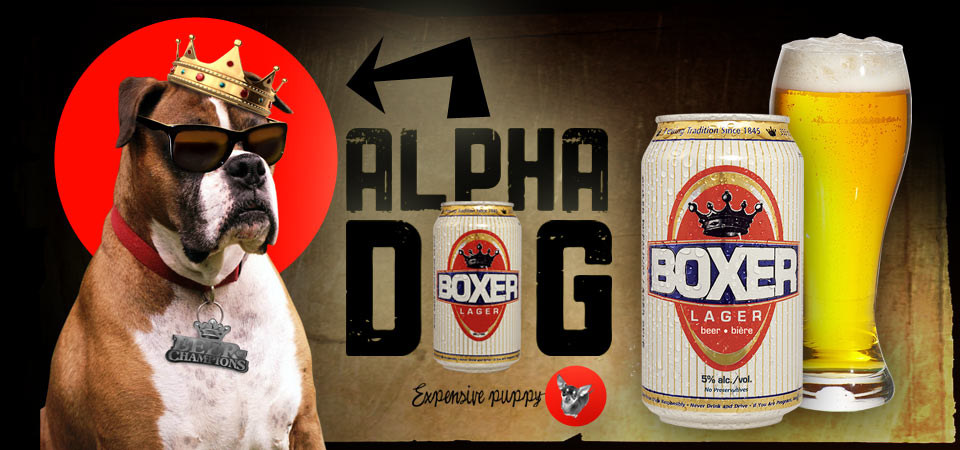 Boxer Lager Beer - Alpha Dog